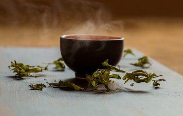 丹波黒豆茶の特徴と効能は?フードライターがおすすめする飲み方